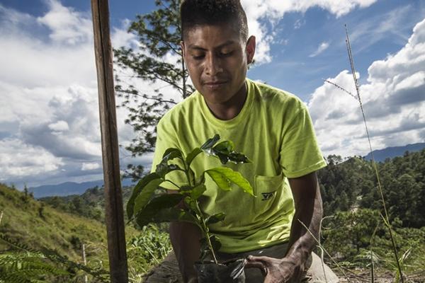 bosques-01B25B8C22-9116-CA46-3543-63E75B1679DB.jpg